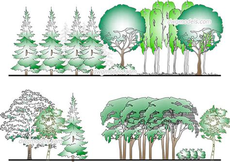 trees  plants dwg models cad drawings
