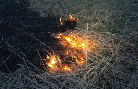 Comal County Lifts Outdoor Fire Ban After Rainfall