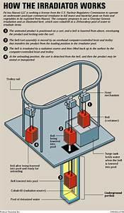 Diagram  Block Diagram Of Cobalt 60 Full Version Hd