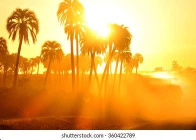 Hot Summer Sun Images, Stock Photos & Vectors   Shutterstock
