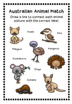australian animals printables australian animals