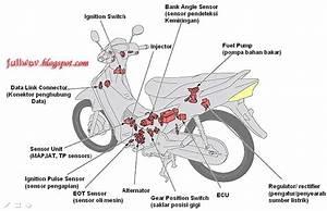 Cafe Motorcycle  Sistem Injeksi Honda Supra X125 Pgm