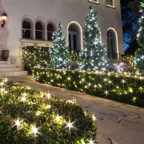 how to measure netted christmas lights shrubs 17 best images about yard ideas on string lights canes and outdoor