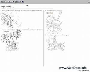Repair Manuals Honda Civic 2d  4  5d  5d  3d 2001