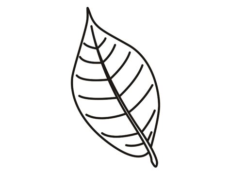 flower leaves coloring pages   print