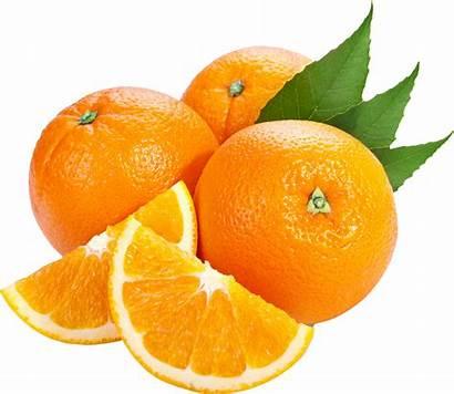 Oranges Transparent Purepng Board
