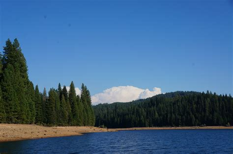 Image result for stumpy meadows lake