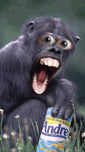 lustige gb bilder funny witzige gb pics