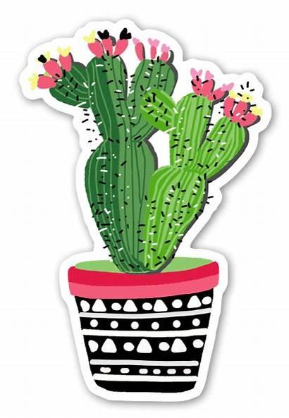 Cactus Plant Sticker Stickerapp Stickers