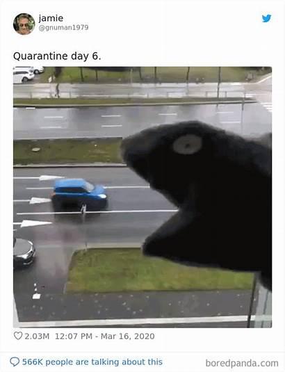 Quarantine Coronavirus Jokes Memes Funny Gifs Bored