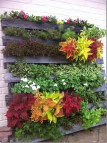 Crea Jardin 81 by 81 Jardin Vertical Con Palets Reciclados Casa Ecohabitada