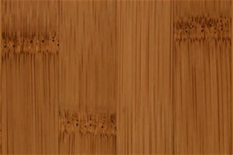 Bamboo Floor Pictures   Images of Flooring Samples