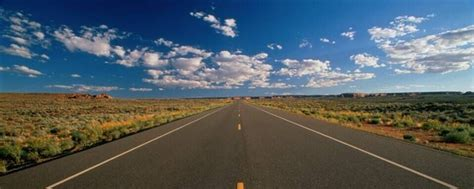 wei song traders profile mqlcommunity