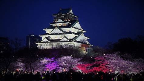 Japan Cherry Blossom Wallpaper Osaka Itinerary 3 Days What To Do In Osaka For 3 Days Living Nomads Travel Tips Guides