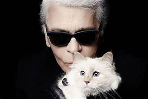 Choupette Chat Karl : karl lagerfeld 39 s pet cat choupette is made into a soft toy by steiff ~ Medecine-chirurgie-esthetiques.com Avis de Voitures