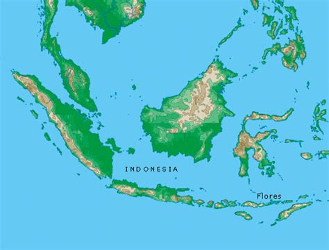 map  flores indonesia images frompo