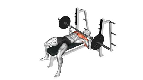 Bench Press At Home by Chest Workouts At Home For Powerful