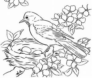 Bird Coloring Pages bird coloring pages printable – Kids ...