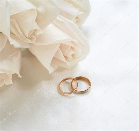 wedding rings and roses as background stock photo