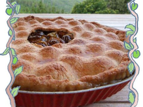 recette pate aux prunes les meilleures recettes de p 226 t 233 aux prunes