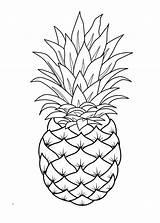 Pineapple Coloring Pages Fruit Printable Template Fruits Adult Books Line Mandala Sheets Cartoon Print Drawing Apple Pepper Raskraska Drawings Simple sketch template