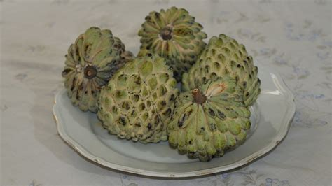 File:Ashta in Lebanon - Atemoya fruit - Guanabana ...