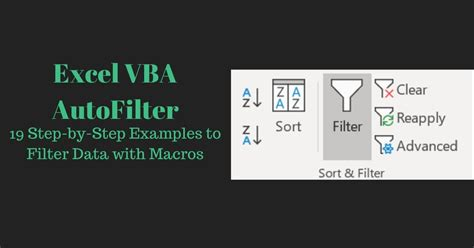 excel vba autofilter  step  step examples  filter