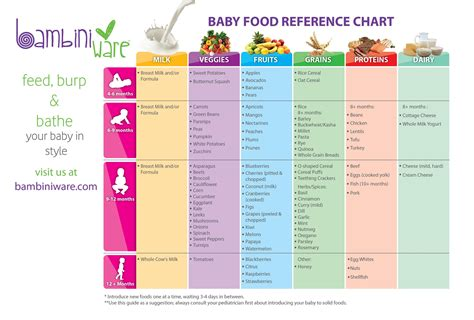 cuisines references introducing solids chart introducing solids to your 6