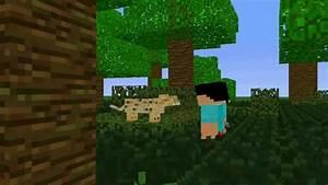 Minecraft Ocelot Sounds Ocelot Animation YouTube