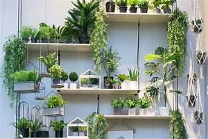Pflanzen In Der Wohnung : urban jungle trend f rs zuhause pflanzen deko von der ambiente 2018 ~ A.2002-acura-tl-radio.info Haus und Dekorationen
