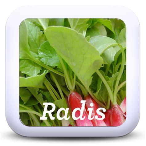 cuisiner les feuilles de radis cuisiner les fanes et épluchures de vos légumes je