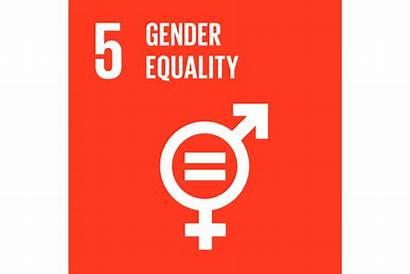 Goal 2030 Agenda Equality Gender Goals Global