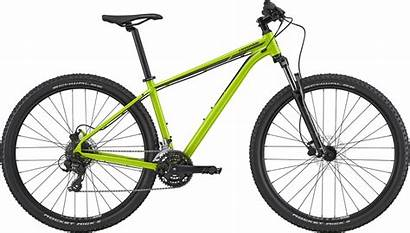 Trail Cannondale Mtb Bike Avalanche Mountain Acid
