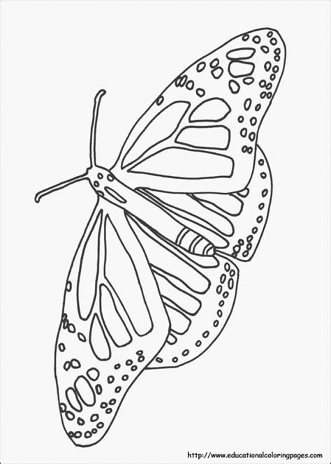 easy nature coloring pages  preschoolers iz