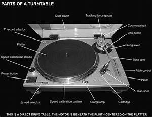 Anatomy Of A Turntable  U2013 Sound Exchange Tampa Bay