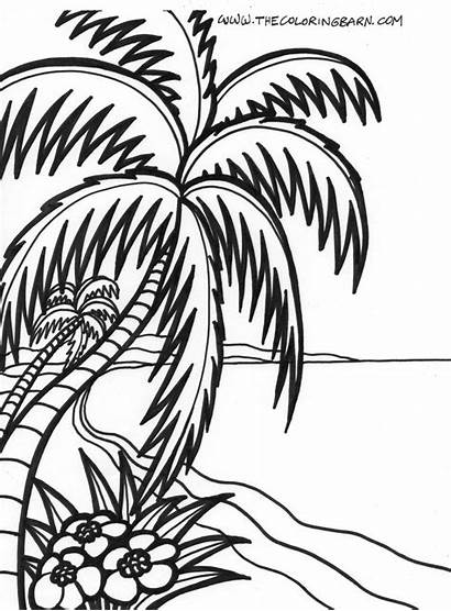 Sunset Beach Drawing Coloring Pages Clipartmag