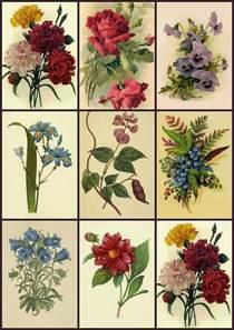 Flower Decoupage Vintage Prints