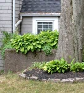 100-year-old house features large perennial border in long ...