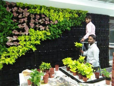 Used In Vertical Gardens by Vertical Garden A Solution To Mounting Air Pollution