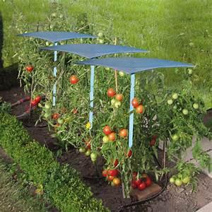Abri A Tomate : abri tomates maison ~ Premium-room.com Idées de Décoration