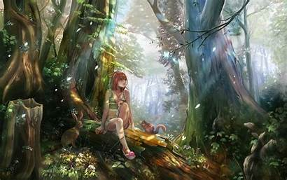 Forest Anime Clearing Background 1080p Desktop Pc