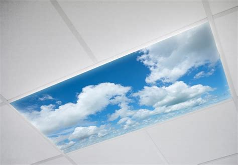 Sky Cloud Panels  Blue Fluorescent Light Covers  Octo Lights