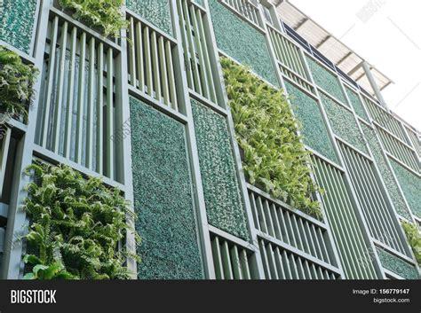 Vertical Garden Facade by Green Facade Vertical Garden Image Photo Bigstock