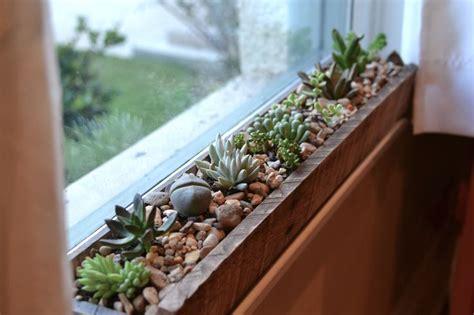 Best Indoor Window Sill Plants by Best 25 Kitchen Garden Window Ideas On Plants