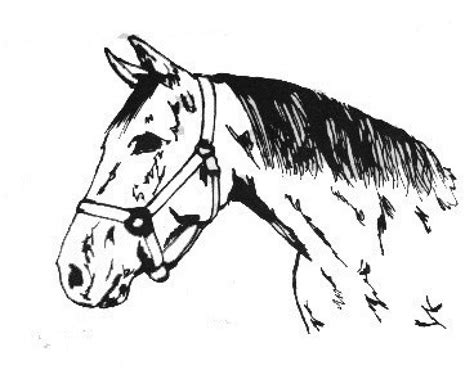 Coloring Pages Of Horses Barrel Racing Wwwimgkidcom