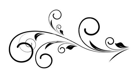 Decorative Swirls - decorative swirl floral vector royalty free stock image