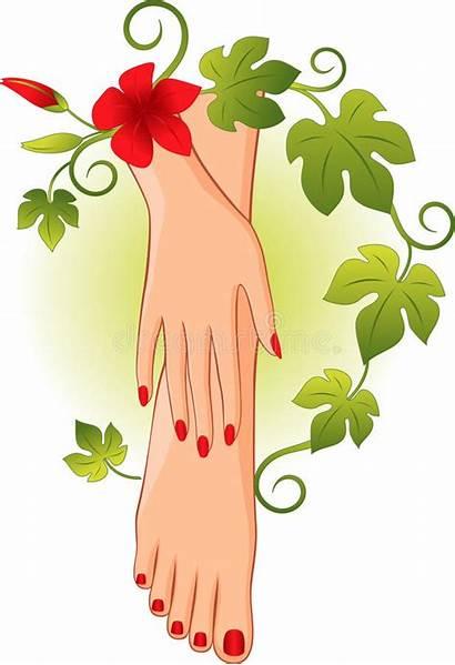 Pedicure Manicure Clip Clipground Illustrations