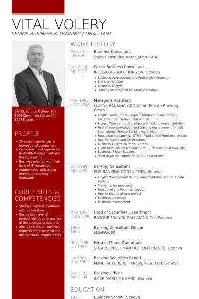 conseil cv consultant