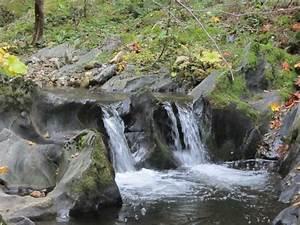 """Gold mining claim """"otter creek"""" el dorado county ..."""