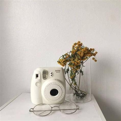 nekoandpanda aesthetic polaroid